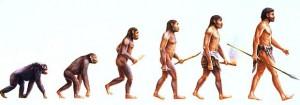 EVOLUÇÃO1