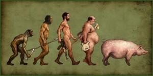 EVOLUÇÃO3