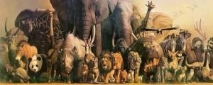animais-selvagens